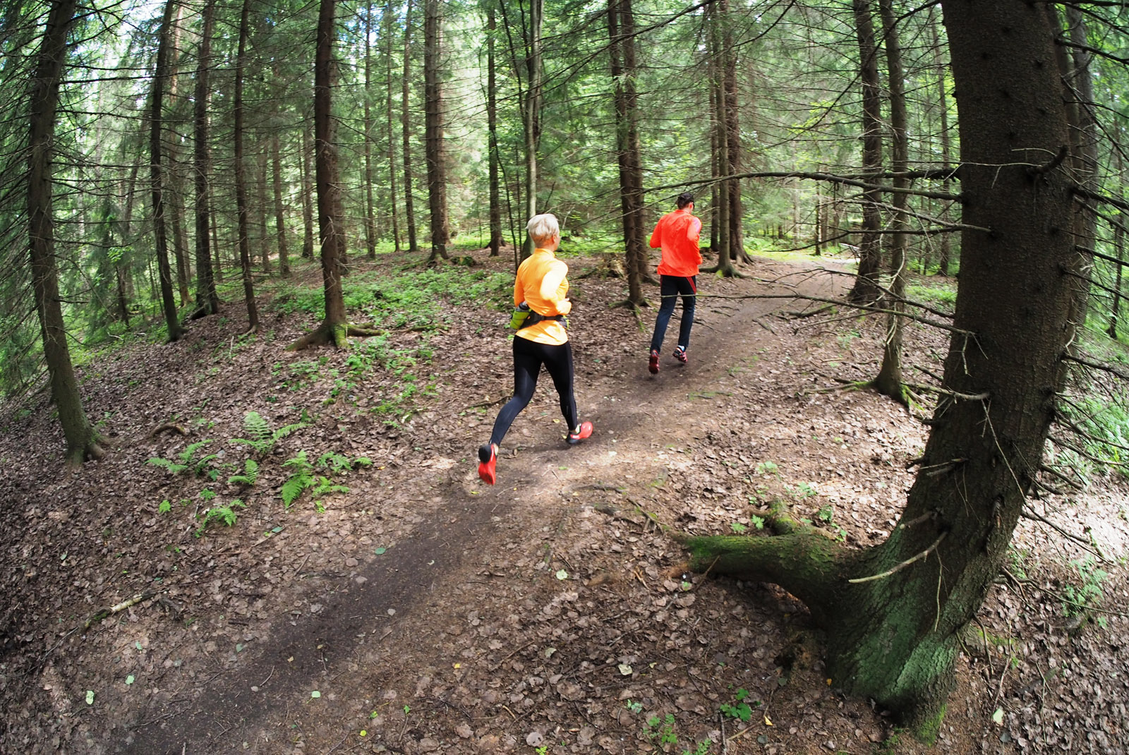 Polkujuoksukausi huipentuu Olympiastadionilla 17.10. | Trailrunning.fi