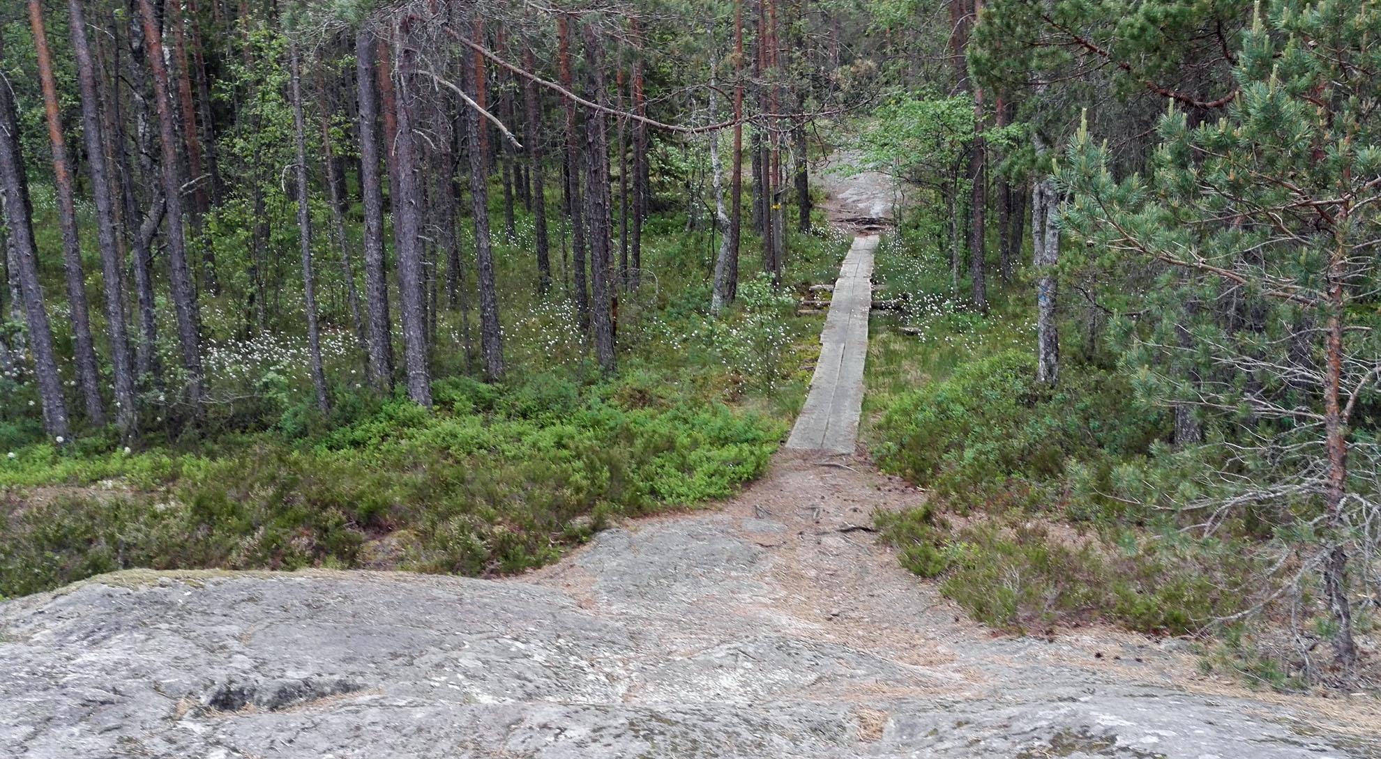Jaama Trail