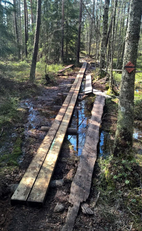 Uusia_pitkospuita_Haukkalammen_lahistolla_kuva-Metsahallitus