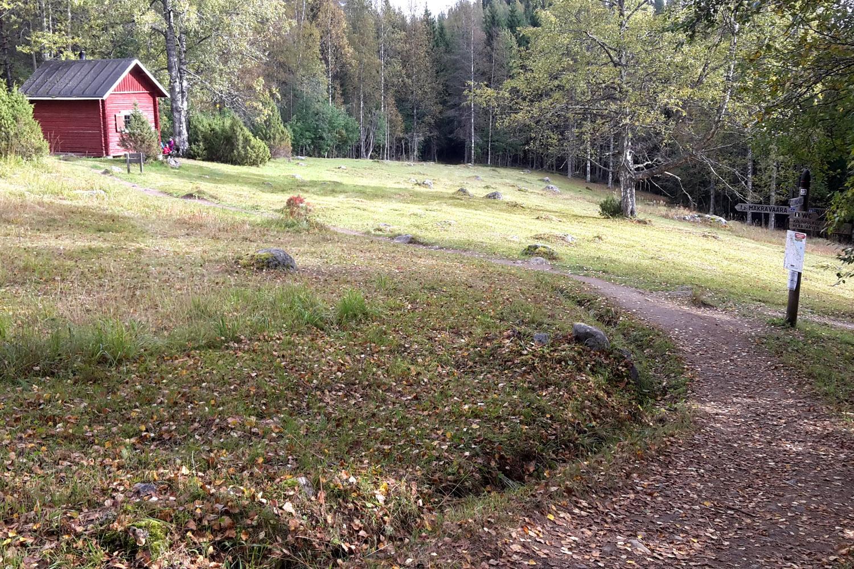 Mäkränvaaran ympäristön poluista suuri osa on sileäpintaisia. Kuva Ikolanahosta 2,7 km kohdalta jossa reitti poikkeaa viimevuotiselta linjalta.