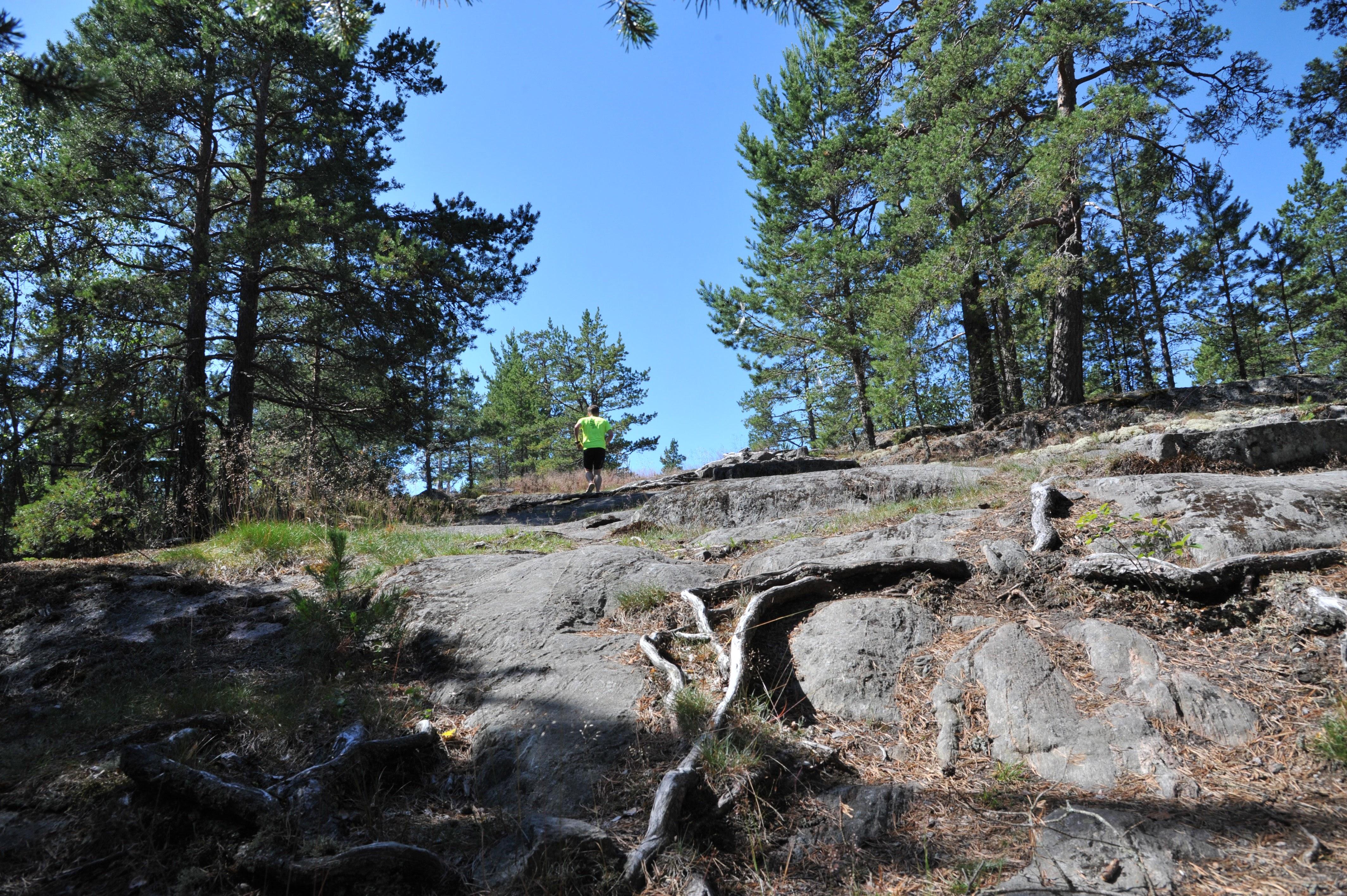 Ruisssalo Trail. Kuvaaja Antti Suonpää.
